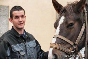 Fierté d'un éleveur de chevaux breton