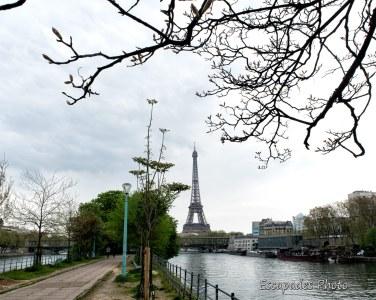 Tour Eiffel vue de l'île aux Cygnes