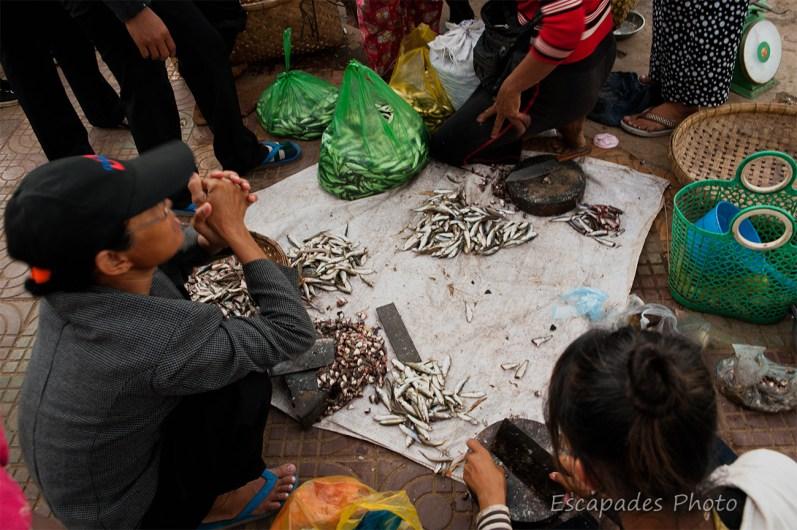 Le marché aux poissons à Kampong Cham