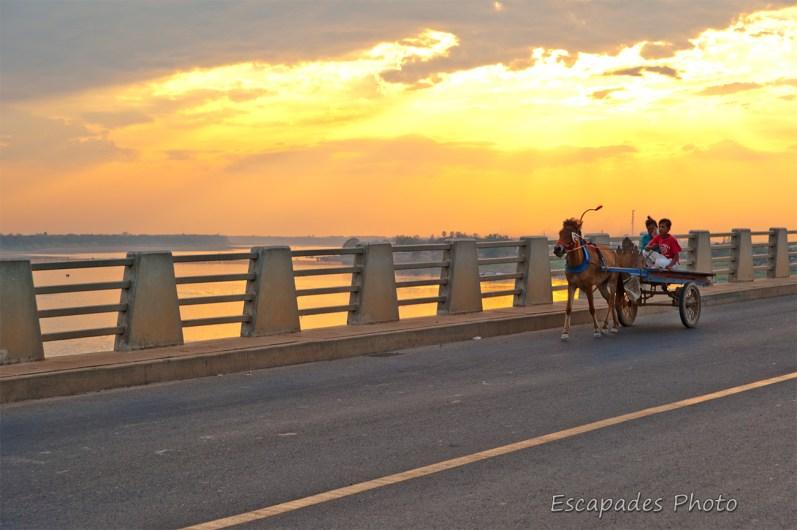 Cheval au coucher de soleil sur le pont Kizuna
