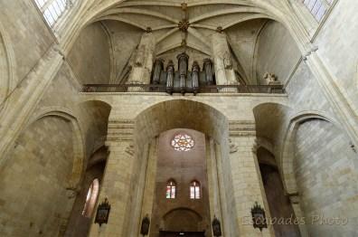Cathédrale de Condom - les orgues