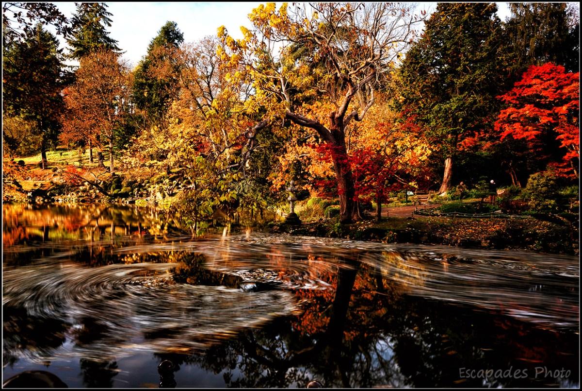 Jardin oriental de Maulévrier