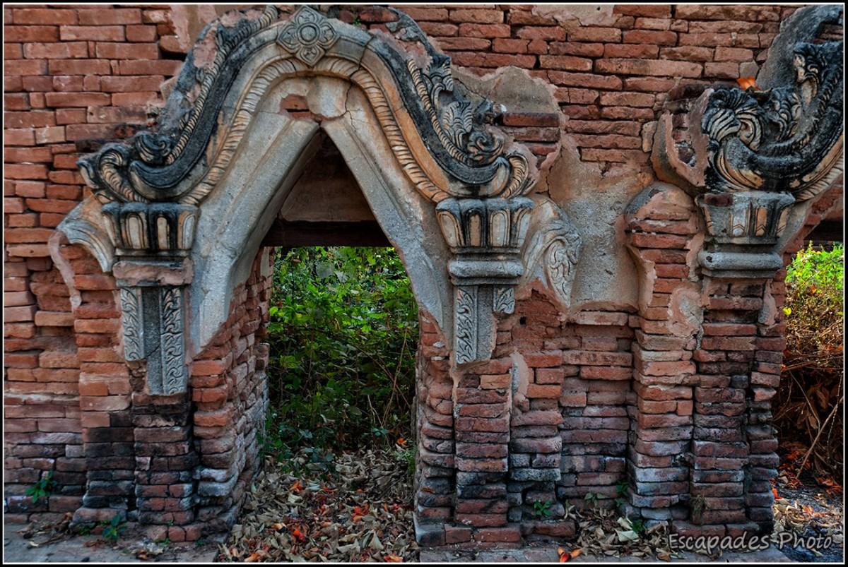Fleurs de kapokier rouge dans les ruines d'Inw