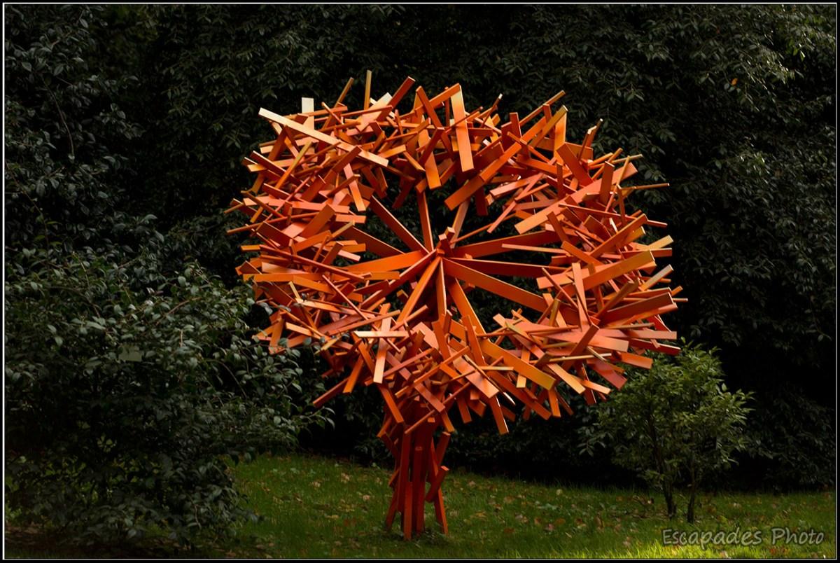 Coronae Digitalis orange 2011