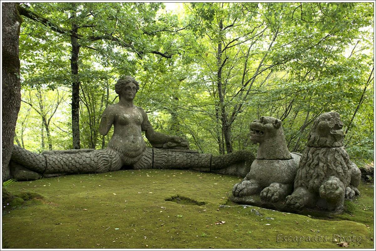 Echidna jardin de Bormazo