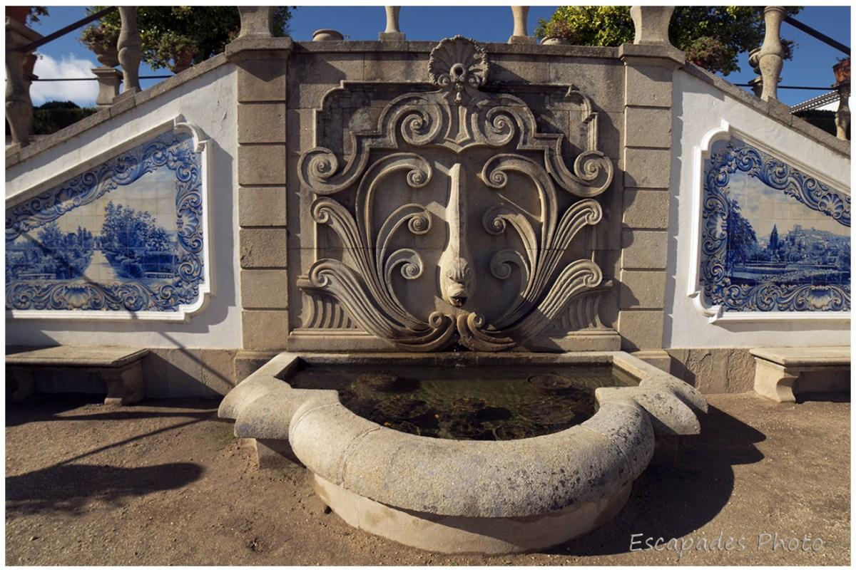 Azulejos, fontaine avec dauphin à Castelo Branco