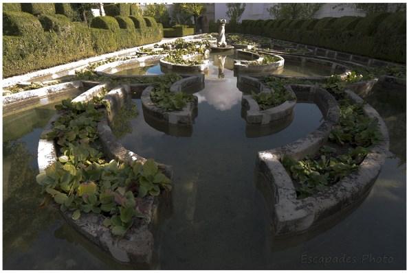 Castelo Branco le jardin baroque du Palais épiscopal