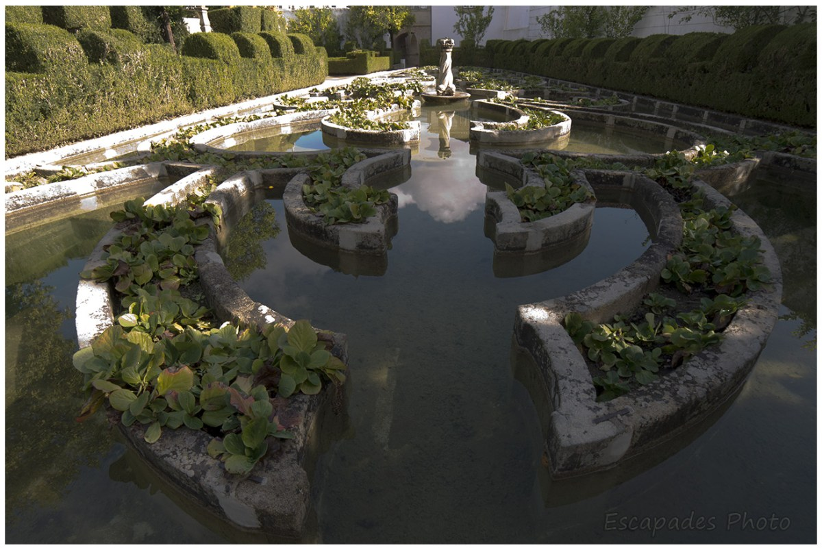 Bassin du jardin Episcopal - Castelo Branco