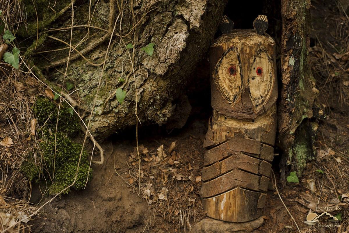Hibou blotti au pied d'un chêne - sentier des moulins