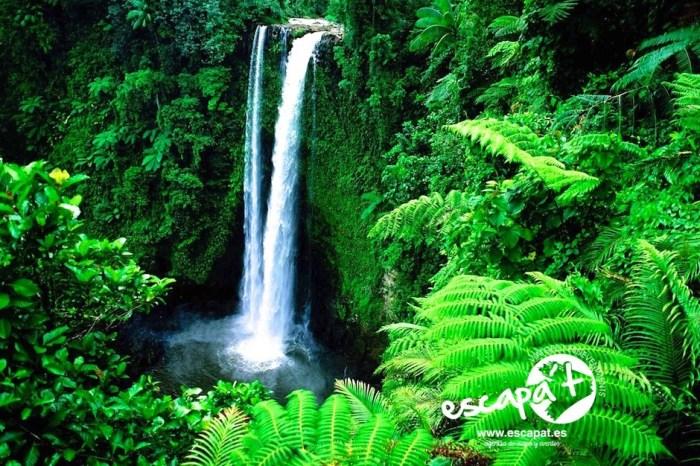 Costa Rica select & Guanacaste