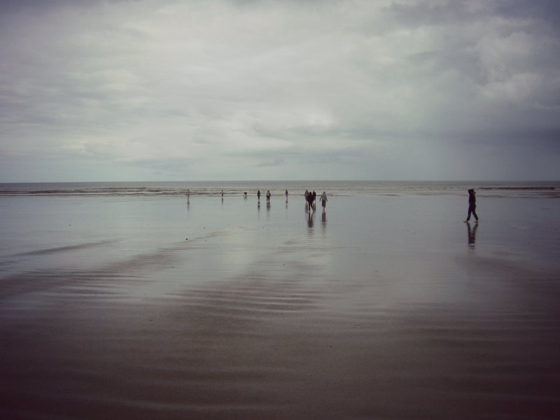 NZ1_ 240