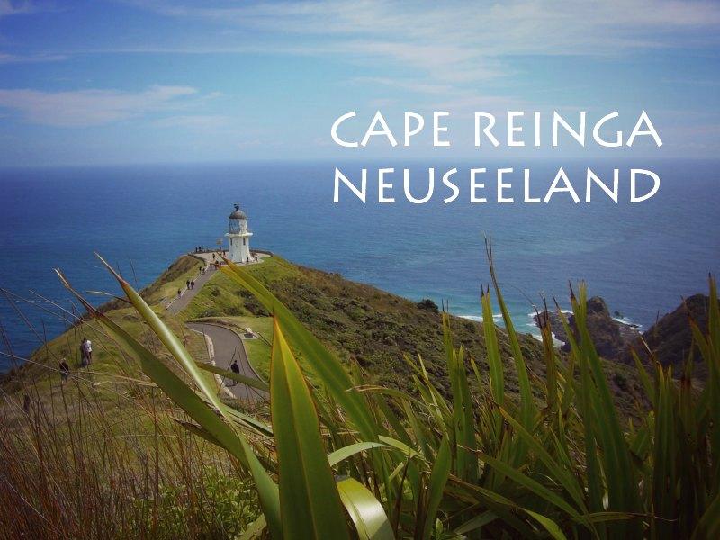 Cape Reinga – der (nicht ganz) nördlichste Punkt Neuseelands