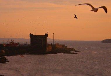 Auf den Spuren von Game of Thrones in Marokko - Essaouira