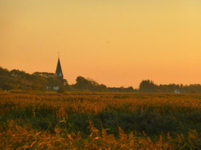 Dänemark: Die Sonne taucht die Marsch in goldenes Licht