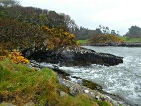 Wanderweg beim Parknasilla Resort an Irlands Westküste