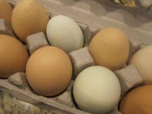 Love the colorfulness of eggs from the Farmer's Market
