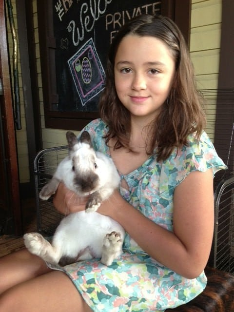 Fake easter bunny