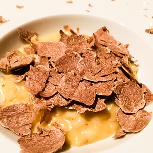 Scott Conant's truffle risotto recipe probably required six pounds of truffles (photo: Dean Fearing)