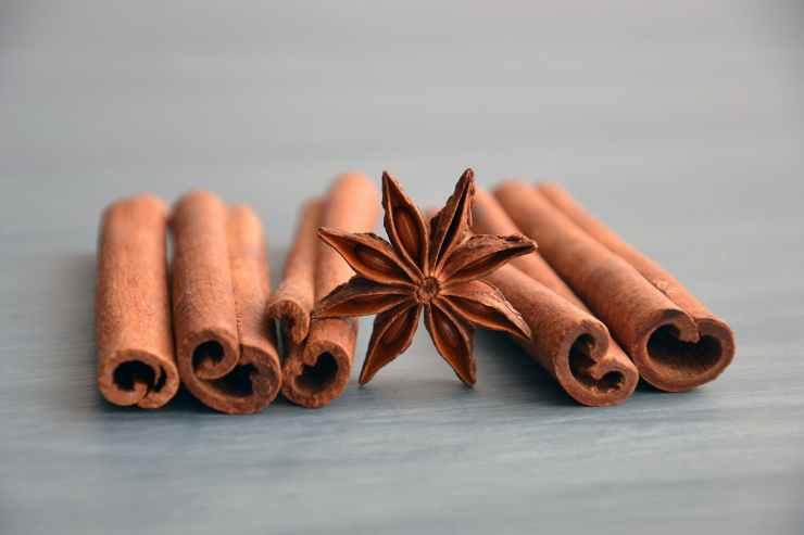 cinnamon and anise
