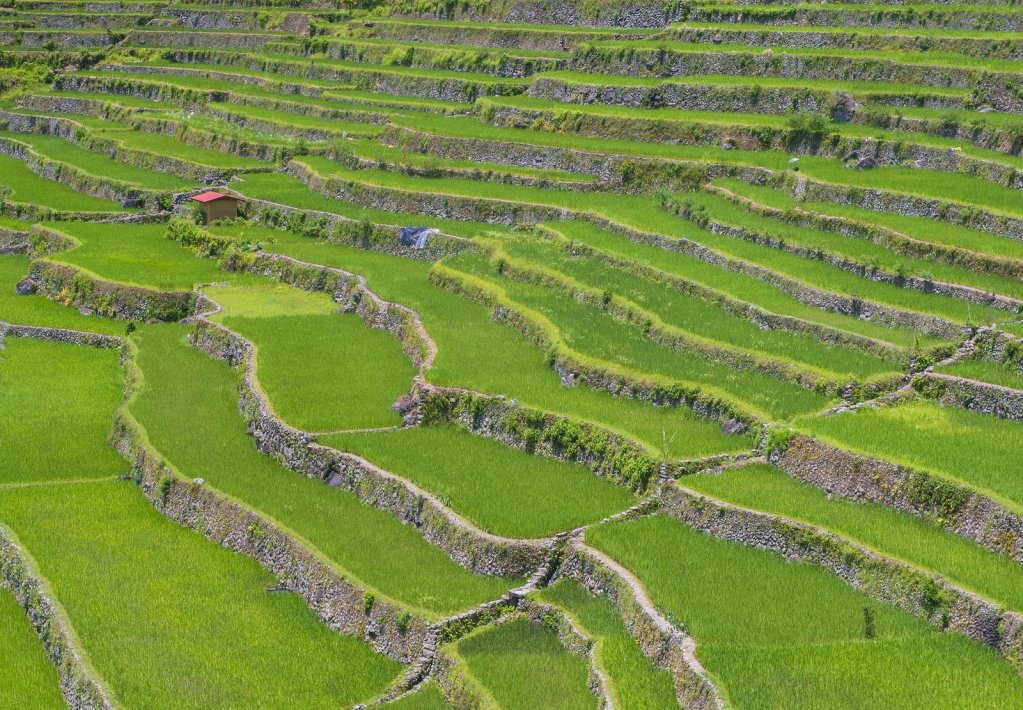 Top Tourist Spots in Ifugao