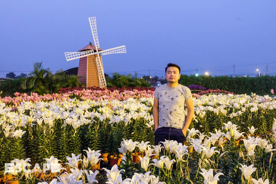 Houli Flower Farm in Taichung