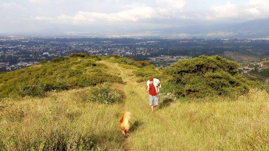 Tramo 1 - se sube por la arista de la montaña en medio de matorrales y bosque nativos (y un perrito cansado)