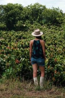 Recorriendo las plantaciones de cacao. Foto: Enrique Avilés