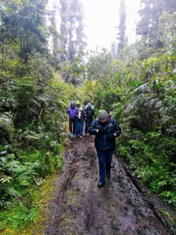 El clima no ayudó, pero los voluntarios hicieron posible el recorrido. Fotos: CP