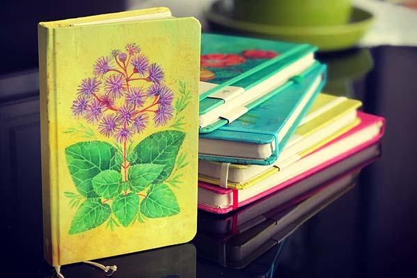 libretas-cuadernos-honrarte.jpg