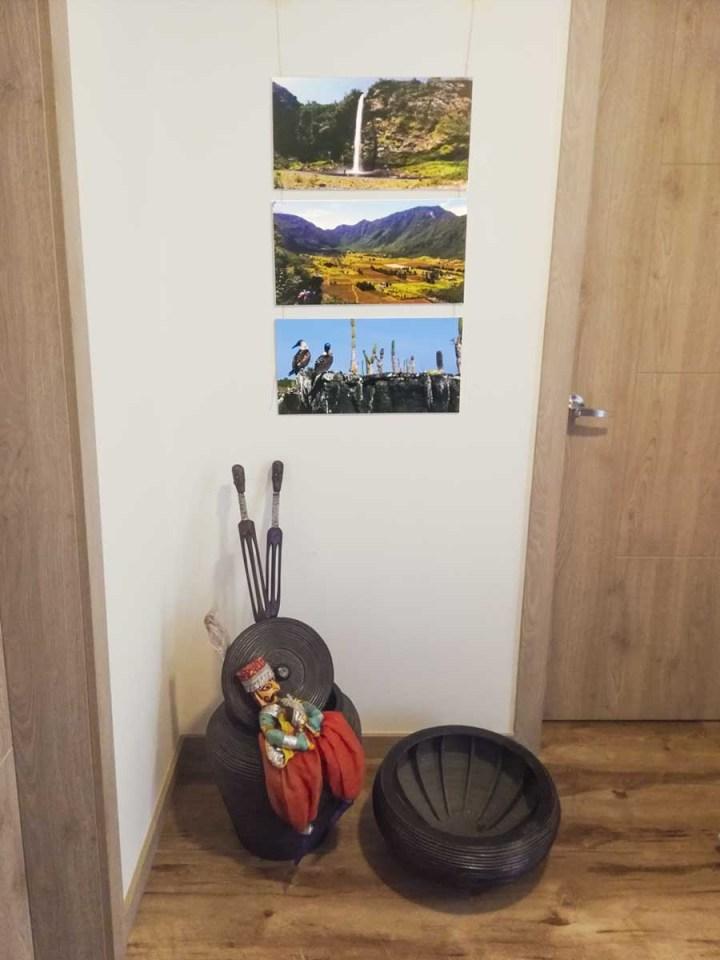 fotos de naturaleza en casa