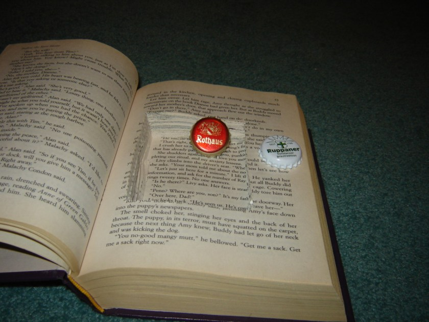 This book can certainly hold some hidden objects.