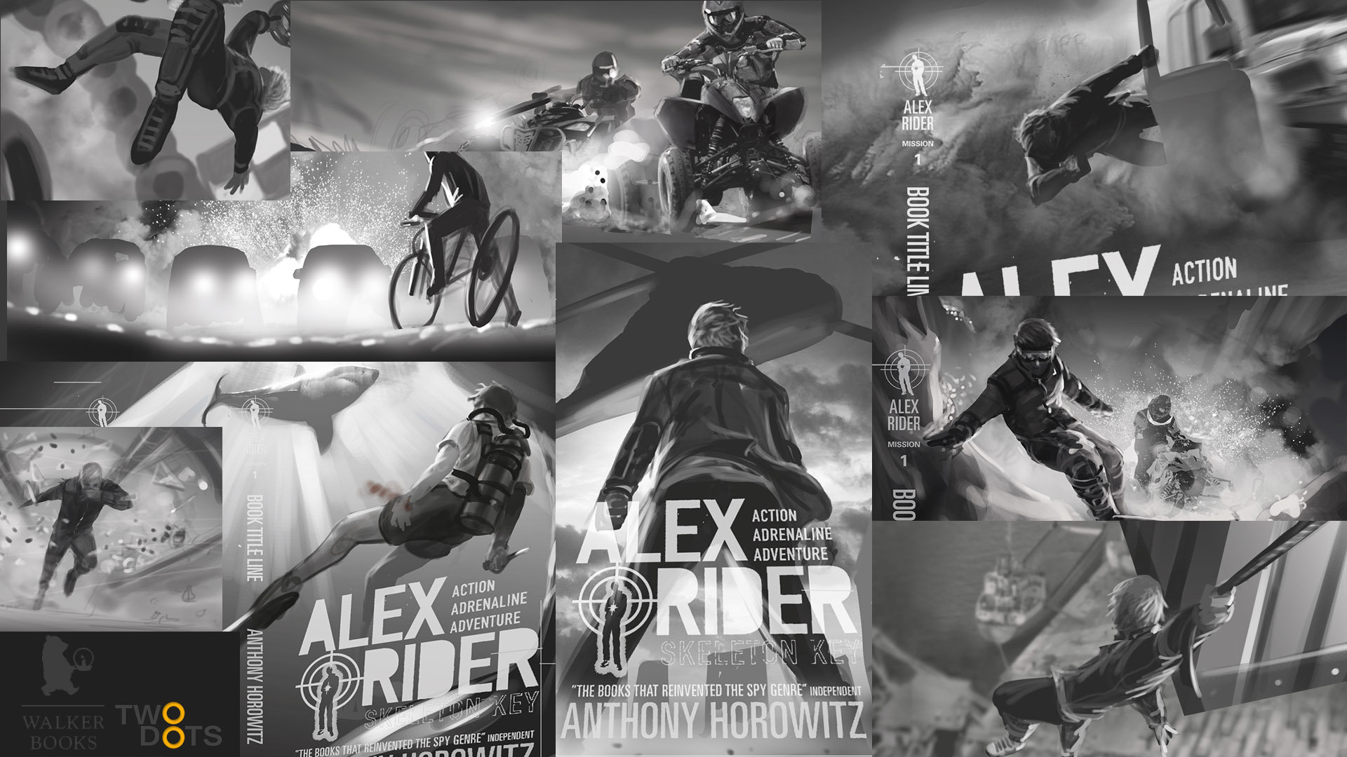 Alex Rider Book Series
