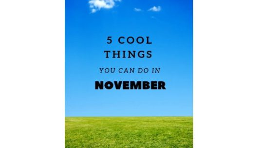 5 Cool Things You Can Do in November