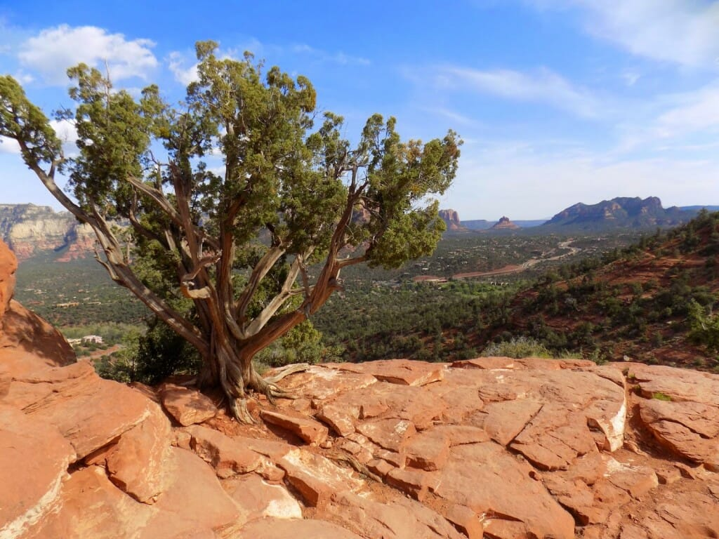 A Sedona Vortex Convinces a Skeptic - Escaping the Midwest
