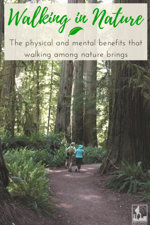 benefits of walking in nature