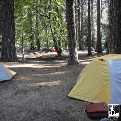 3 Essential Camping Skills