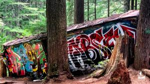 Whistler Train Wreck Hike