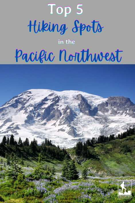hike in the pacific northwest