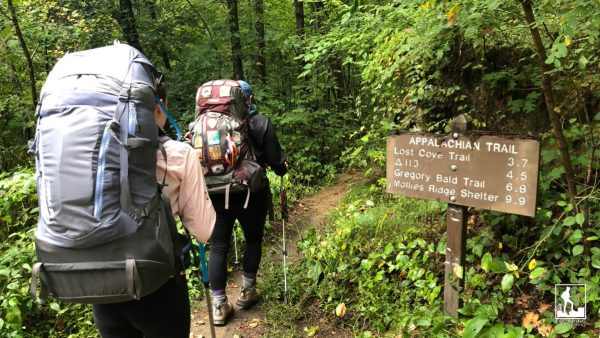 chattanooga, things to do, Great Smoky Mountain National Park.