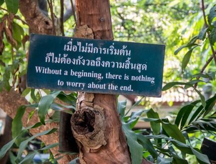 Chiang Mai-1121