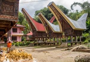 Tanah Toraja-38