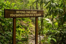 Aha... interesting ....