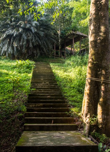 Stairway up to the rotten bungalows.