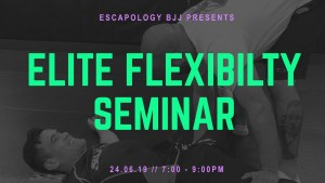 Elite Flexibility Seminar Banner.001