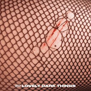 Braii - Lovely Dark Things