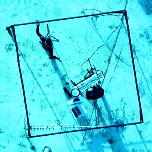 Mira Awad - Zaamat Naamat (Leaderhip & Sheep) feat. Adam Gorlizki - ميرا عوض - زعامات نعامات (Israel 2009)