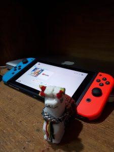 La llama que me regaló Sol, jugando a la Nintendo Switch.