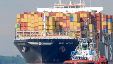 Photo of Exportaciones agroalimentarias registran crecimiento de 8.6% entre enero y noviembre de 2019