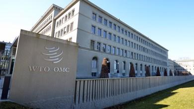 Photo of Lo que nos faltaba: Daños al comercio por COVID-19 afectan más a mujeres que a hombres: OMC