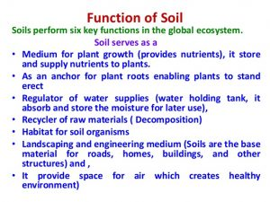 Six main functions of the soil